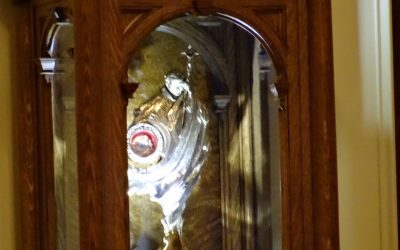 Introduction of relics of St. John Paul II